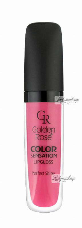 Golden Rose - COLOR SENSATION LIPGLOSS - Błyszczyk do ust - 111