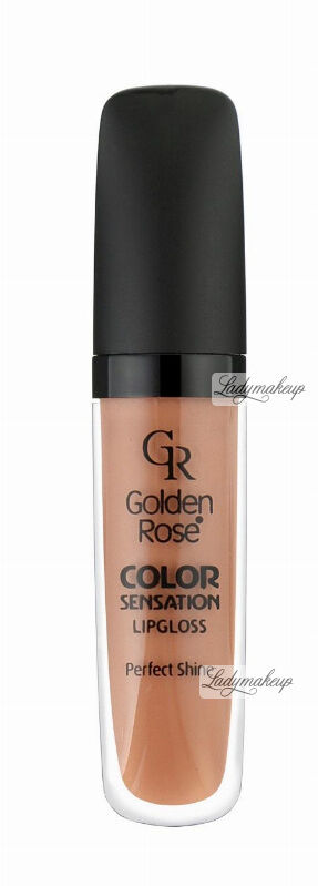 Golden Rose - COLOR SENSATION LIPGLOSS - Błyszczyk do ust - 107